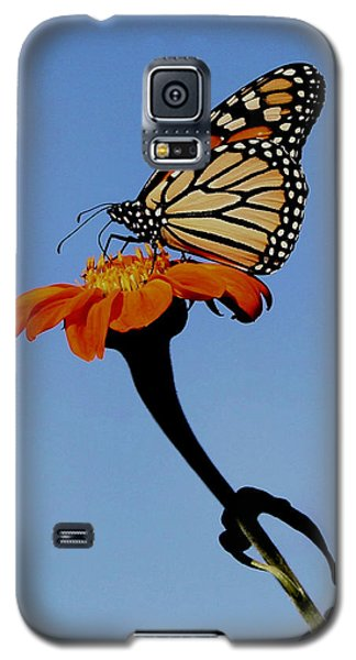 Monarch On Zinnia  Galaxy S5 Case