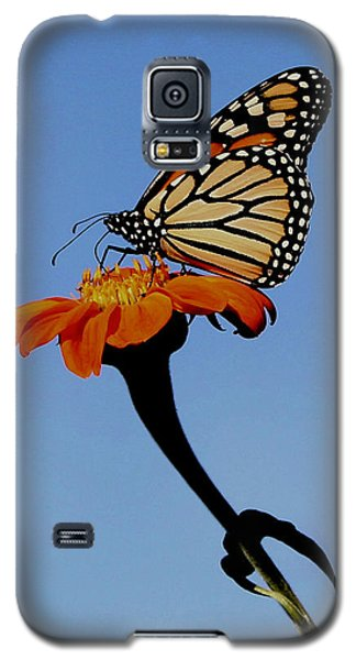 Monarch On Zinnia  Galaxy S5 Case