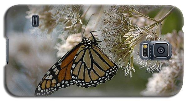 Monarch Pink Galaxy S5 Case