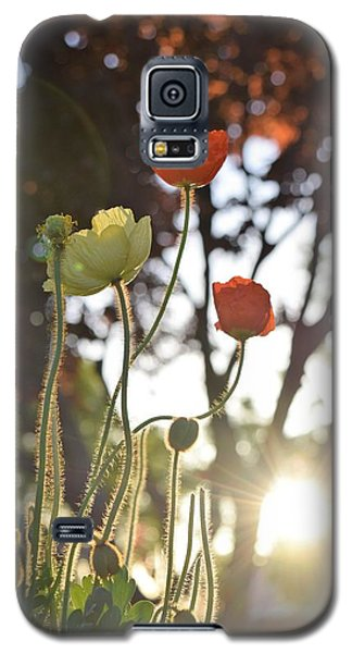 Monday Morning Sunrise Galaxy S5 Case