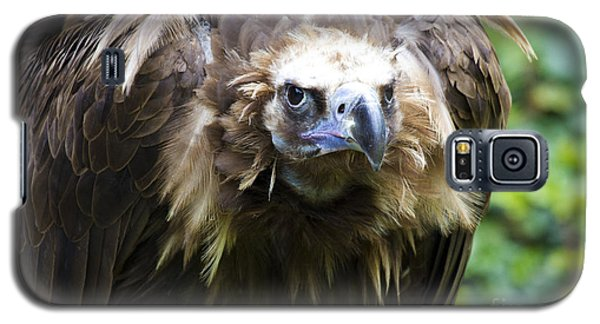 Monk Vulture 3 Galaxy S5 Case