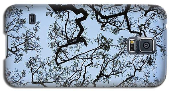 Monkey Pod Tree Patterns Galaxy S5 Case