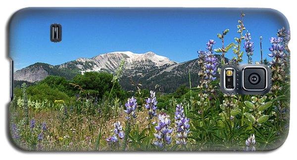 Mammoth Meadow   Galaxy S5 Case