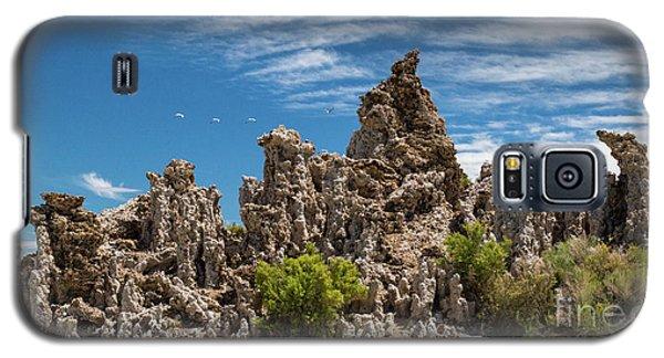 Mono Lake Tufa Galaxy S5 Case