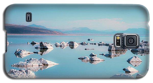 Mono Mirror Galaxy S5 Case