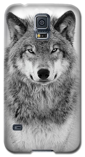 Monotone Timber Wolf  Galaxy S5 Case