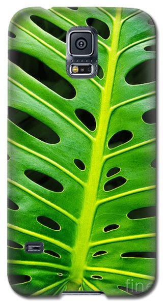 Monstera Leaf Galaxy S5 Case