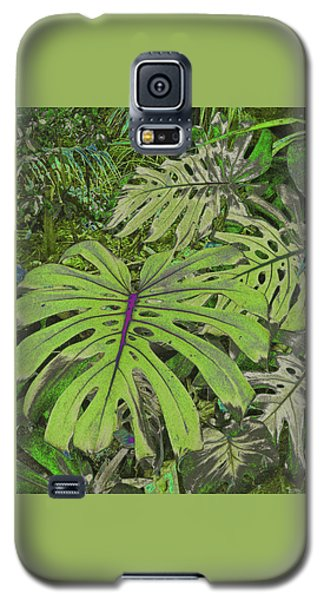 Monstera Leaves - Soft Greens Galaxy S5 Case