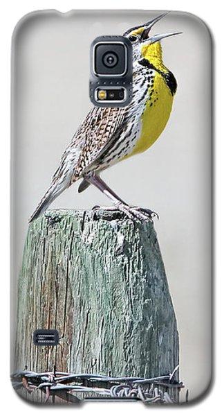 Meadowlark Galaxy S5 Case - Montana Meadowlark's Spring Song by Jennie Marie Schell