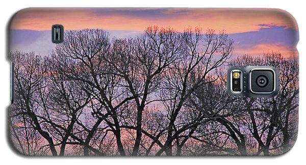 Galaxy S5 Case featuring the photograph Montana Sunrise Tree Silhouette by Jennie Marie Schell
