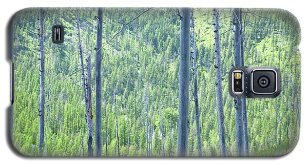Montana Trees Galaxy S5 Case
