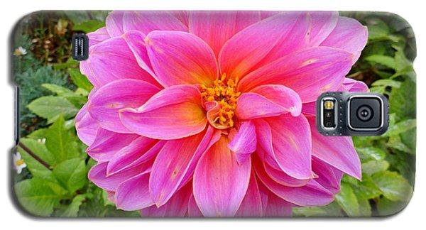 Monterey Pink Galaxy S5 Case