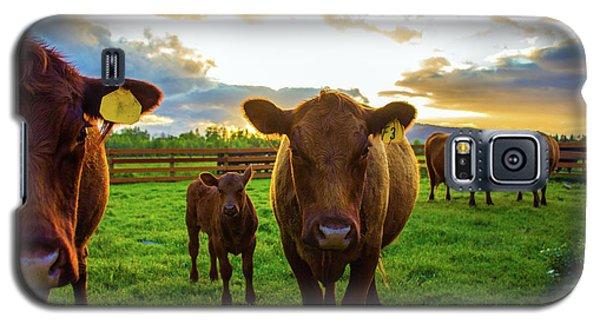 Moo Galaxy S5 Case