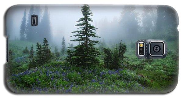 Moody Myrtle Falls Trail At Mount Rainier Galaxy S5 Case by Lynn Hopwood