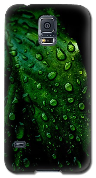 Moody Raindrops Galaxy S5 Case