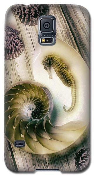 Moody Seahorse Galaxy S5 Case