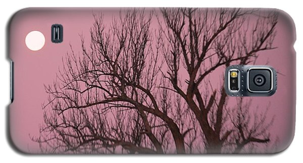 Galaxy S5 Case featuring the photograph Moon And Tree by Sumoflam Photography