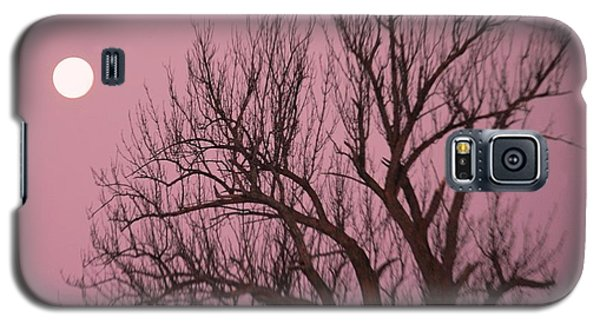 Moon And Tree Galaxy S5 Case