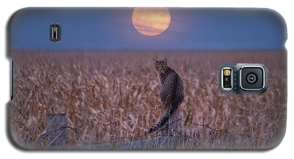 Moon Kitty  Galaxy S5 Case