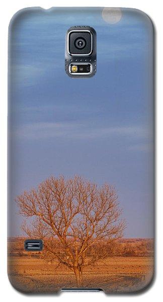 Moon Over Tree Galaxy S5 Case