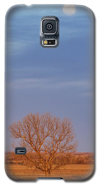 Moon Over Tree Galaxy S5 Case