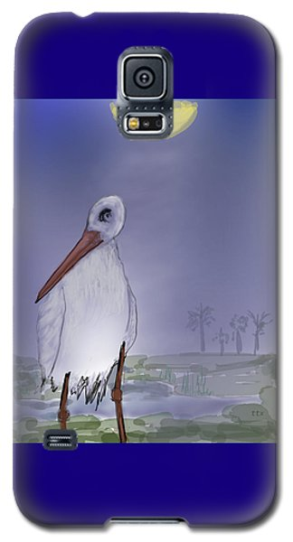 Moon Rise Becomes A Stork Galaxy S5 Case