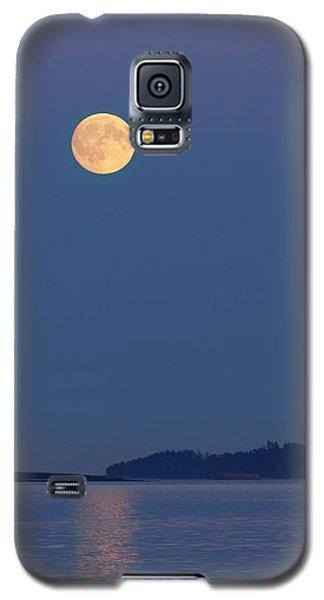 Moonlight - 365-224 Galaxy S5 Case by Inge Riis McDonald