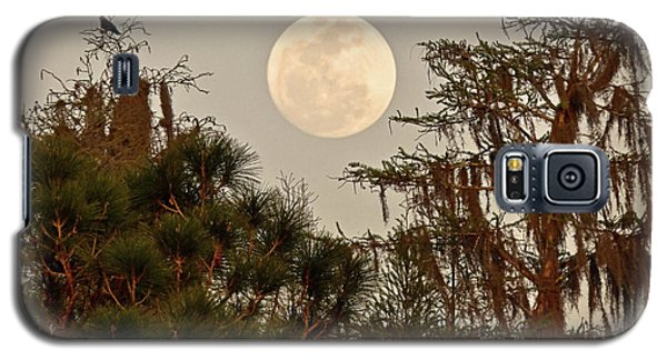 Moonrise Over Southern Pines Galaxy S5 Case