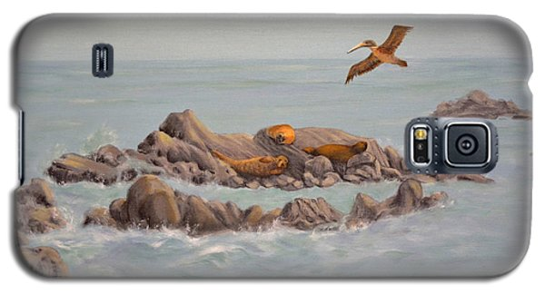 Moonstone Beach Tidepool Galaxy S5 Case