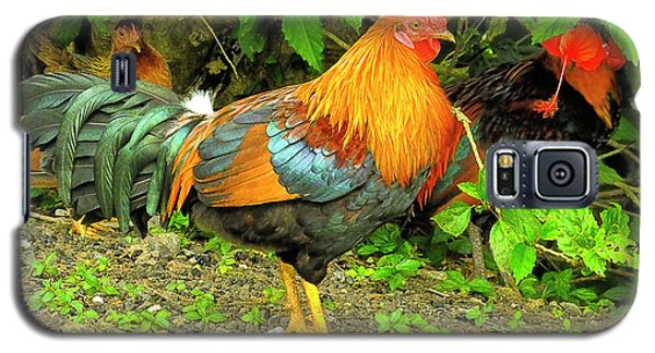 Galaxy S5 Case featuring the photograph Moorea Chicken by Bill Barber