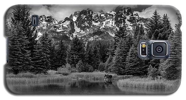 Moose At Schwabacher's Landing Galaxy S5 Case