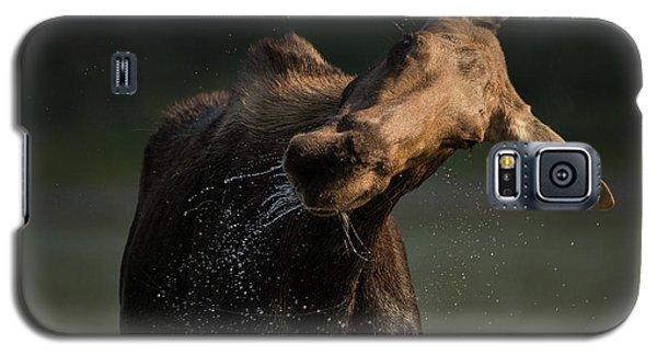Moose Drool // Glacier National Park  Galaxy S5 Case