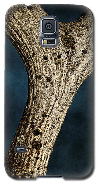 Moose Horn Curves Galaxy S5 Case