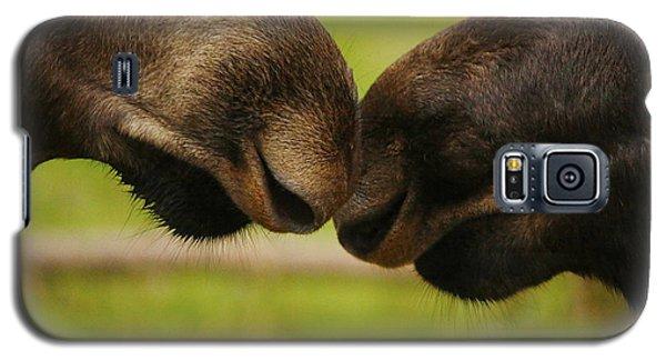 Moose Nuzzle Galaxy S5 Case