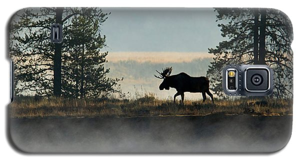 Moose Surprise Galaxy S5 Case