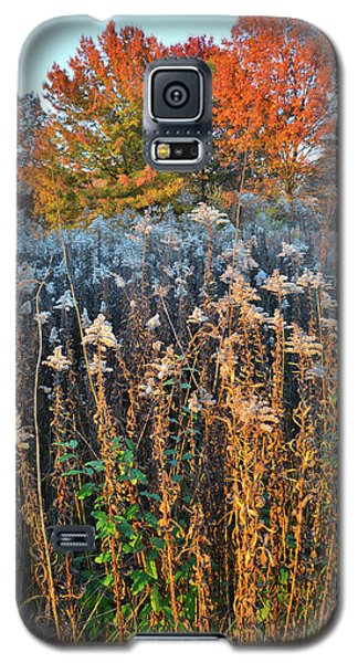 Galaxy S5 Case featuring the photograph Moraine Hills Fall Colors by Ray Mathis