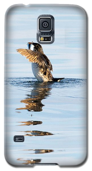 Auklets Galaxy S5 Case - More Than A Mouthful by Mike Dawson