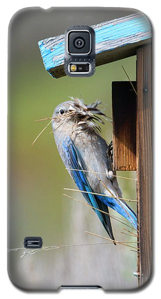 Galaxy S5 Case featuring the photograph More Than Mouthful by Mike Dawson