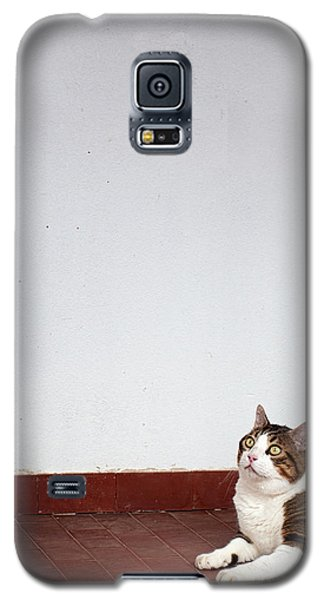 Galaxy S5 Case featuring the photograph Morfeas by Laura Melis
