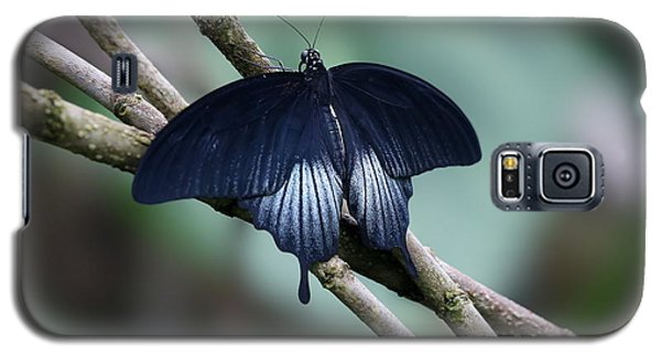 Great Mormon Butterfly Galaxy S5 Case