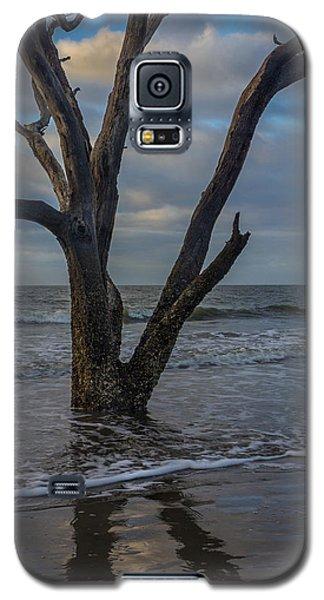 Morning At Botany Bay Galaxy S5 Case
