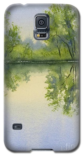 Morning At Turtle Pond Galaxy S5 Case