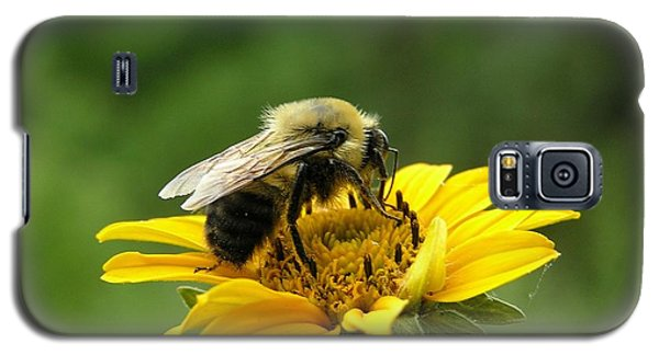 Morning Bee Galaxy S5 Case