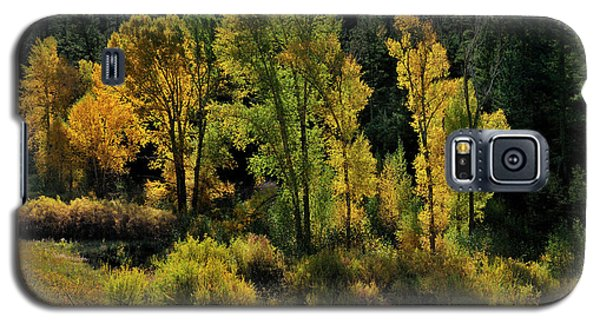 Morning Cottonwoods Galaxy S5 Case