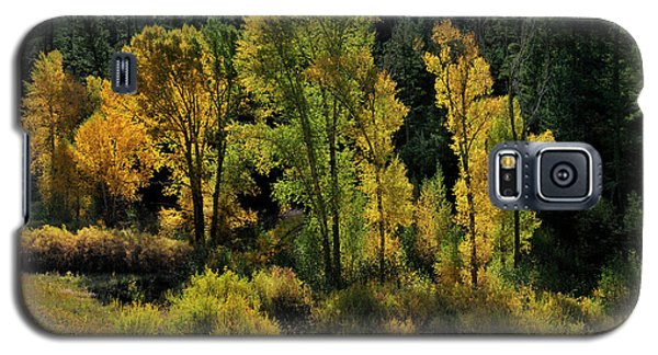 Morning Cottonwoods Galaxy S5 Case