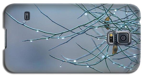 Morning Dew Galaxy S5 Case by Tam Ryan