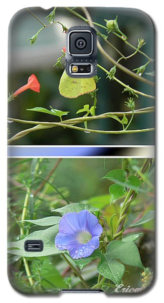 Galaxy S5 Case featuring the photograph Morning Glories And Butterfly by EricaMaxine  Price