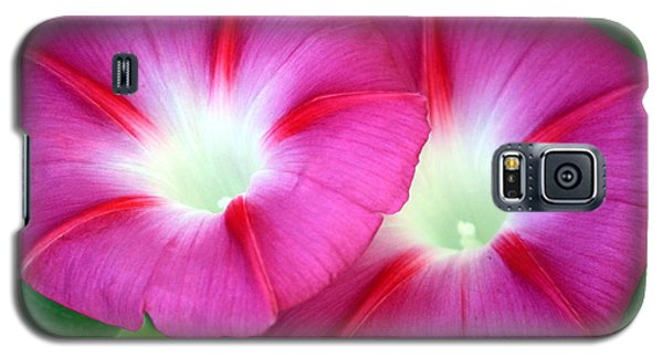 Morning Glories Galaxy S5 Case by Sheila Brown