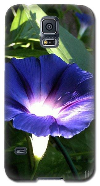 Morning Glorious Galaxy S5 Case