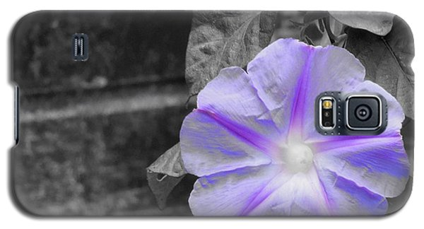 Morning Glory Flower Galaxy S5 Case